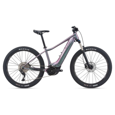 E-bike ANYTOUR E+ 2 LDS