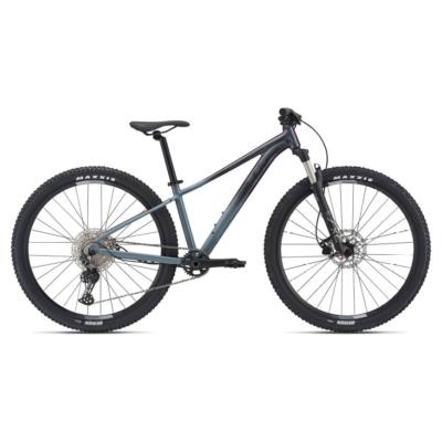 XTC SLR 29 2 (2021)